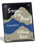 Silver Vale Sales Awards